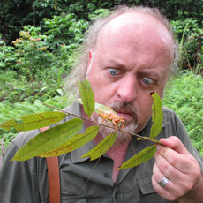 Bill Bailey - Jungle Hero